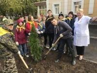 Посадка деревьев у новой поликлиники 21 сентября 2019 года